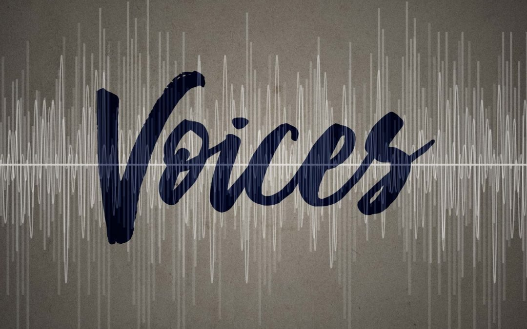 Who's Going To Be Your Next Voice Artist In Ghana?