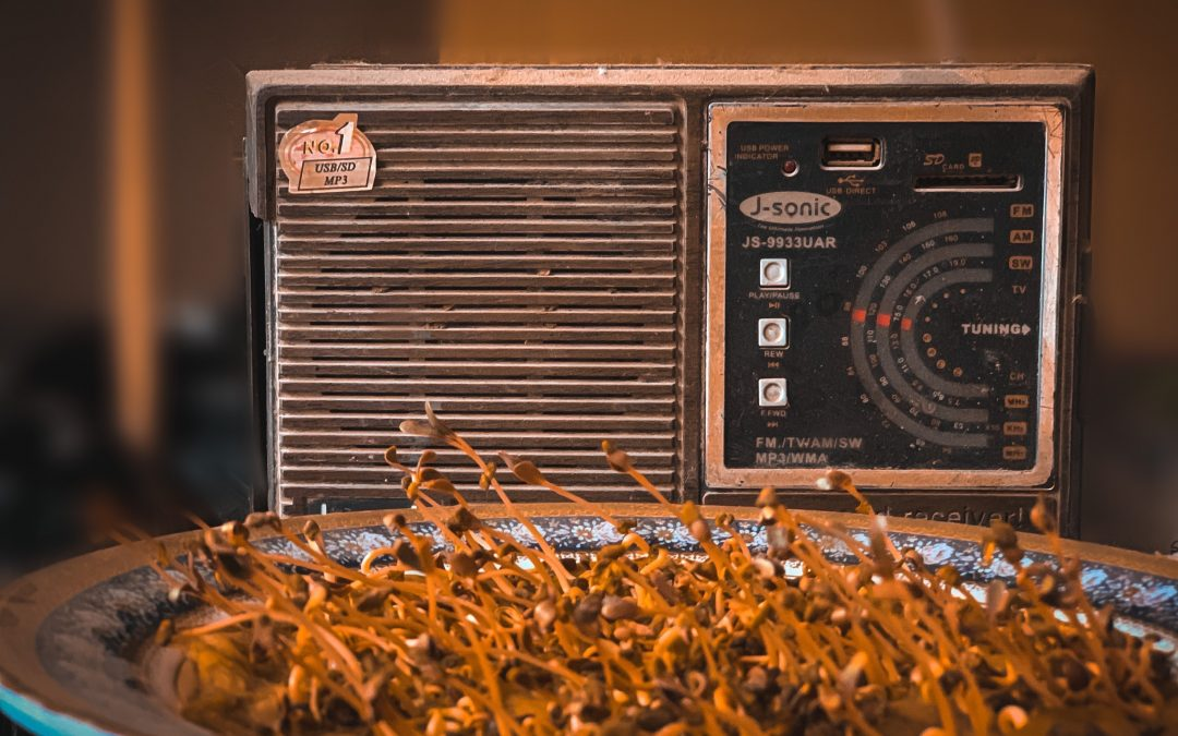 How To Get Great Experience With The Best Voice For Radio Jingles..